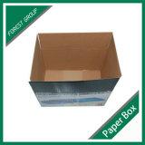 Caja de envío de color de fábrica