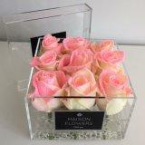 Cas d'exposition acrylique clair romantique de luxe de fleur de cadre de Rose et de fleur