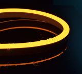 보장 2 년을%s 가진 DC24V AC230V LED 네온 등