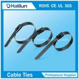 Edelstahl voll überzogene Selbst-Verschluss Kabelbinder-Reißverschluss-Epoxidgleichheit