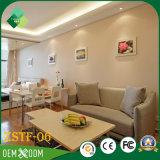 Meubles de luxe d'hôtel de type d'éclairage en bois (ZSTF-06)