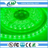 IP65 luz de tira estupenda del brillo SMD5050 LED con 240LEDs