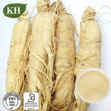 Extracto de Gingseng puede aumentar la producción de colágeno y reducir las arrugas faciales