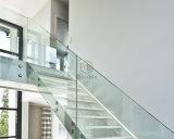 Escalera de acero de la construcción con la barandilla