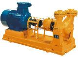Y-Serien-Erdöl-Raffinerie-kreisförmige Schleuderpumpen