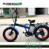 리튬 건전지 뚱뚱한 타이어 전기 자전거 LCD 디스플레이