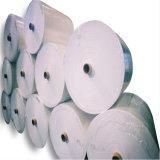 Бумажные Rbd300um 420g каменные улучшают для хозяйственной сумки & висят бирку