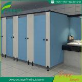 Placa impermeável azul nova da divisória do compartimento do toalete