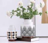 Flowerpot di ceramica con il basamento