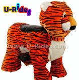 Тигр Прогулки для животных
