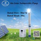 6inch 태양 스테인리스 펌프, 잠수할 수 있는 펌프 시스템, Agriculturre 펌프