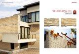 3D Rustieke BuitenTegel van de Deur van de Muur Matte uit