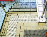 Piscina Tile per Bathroom/Outdoor Used Rdyc130