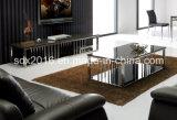 Carrinho da tevê/mobília da sala de visitas/tabela aço inoxidável/mobília Home/tabela moderna/tabela de vidro/tabela vidro Tempered/tabela Dg020 vidro Tempered