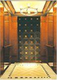 Geëtste/M. van de Lift van de Lift van de passagier Spiegel & Mrl Aksen ty-K182
