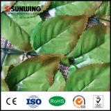 정원 담쟁이 담 인공적인 산울타리가 고품질 프라이버시 스크린에 의하여 설치한다