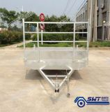 タンデム中断中国(SWT-FTT127)からの低いベッドのトレーラーのインポート