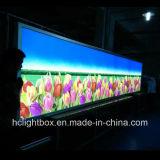 LED 황급한 프레임 Backlit 표시 LED Backlit 가벼운 상자
