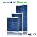 Picovolt Panel 100W Solar Module com 25years Warranty