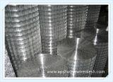 Treillis métallique soudé enduit par PVC galvanisé d'acier inoxydable