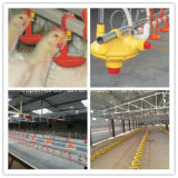 Equipo de consumición de las aves de corral automáticas para el pollo