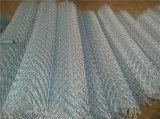 De Omheining van de Link van de Ketting van het Roestvrij staal van de superieure Kwaliteit met Lagere Prijs