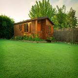 V裏庭のための総合的な草を美化する形