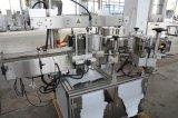 서류상 레이블을%s 자동적인 찬 접착제 레테르를 붙이는 기계