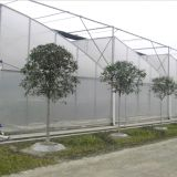 Парник рекламы Multi-Пяди полиэтиленовой пленки Китая горячим используемый сбыванием/пластмассы земледелия