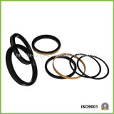 Selos do pistão de PTFE+Bronze