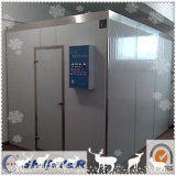 Chambre froide de congélateur plus froid pour la mémoire de nourriture