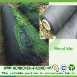 Rolle, die schwarzes nichtgewebtes Anti-Weed-Gewebe packt