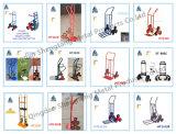 Fornecedor do Wheelbarrow de China
