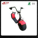 Rueda grande de la movilidad/vespa eléctrica de la vespa 800W Citycoco del neumático
