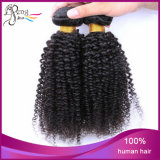 Cabelo humano Curly Kinky do cabelo indiano por atacado do cabelo humano