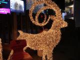 Luzes impermeáveis do diodo emissor de luz da estrela das luzes de Natal do diodo emissor de luz da lâmpada do diodo emissor de luz
