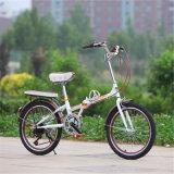Bike сразу надувательства фабрики самый дешевый миниый складывая (ly-a-53)