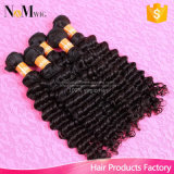 すばらしいヘアケア製品のペルーのカーリーヘアーの織り方2束のJulietのバージンの毛の