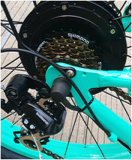 4.0 Zoll fettes Trie Schnee-Strand-Kreuzer E-Fahrrad 500W 48V Gabel-Aufhebung-Gebirgsfahrrad