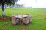 Tabella pranzante e presidenza di vimini esterne del rattan del giardino