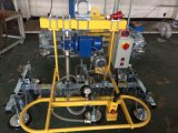 Piatto d'acciaio che tratta l'elevatore di trattamento/vuoto dello strato di /Metal dell'elevatore/capienza 500kg