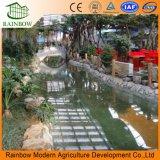 Стеклянная Оранжерея для Экологического Ресторана и Сада для Овощеводства