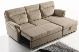 Sofa de cuir véritable de salle de séjour (C722)