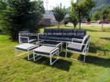 Material de acero/de aluminio y conjunto moderno del sofá del metal del aspecto
