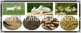 Automatic Single Conditioner Ring Die Poultry Feed Pellet Machine