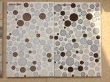 3D de inyección de tinta pintura de cerámica pared interior del azulejo Tamaño 250X400mm