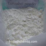 Polvo esteroide sin procesar oral 4-Chlorodehydromethyltestosterone 2446-23-3 de Turinabol Tbol