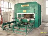 Automatische Rubber het Vulcaniseren van de Plaat van de Pers Machine met Ce van ISO