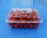 フルーツのトマトのためのClamshelslのまめの包装ボックス500グラム