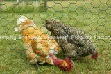 Máquina del acoplamiento del pollo para la máquina hexagonal del acoplamiento
